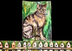 Plakat: Wlazł kotek na płotek - plan przesłuchań