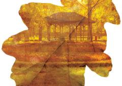Plakat: Jesienny park w obiektywie